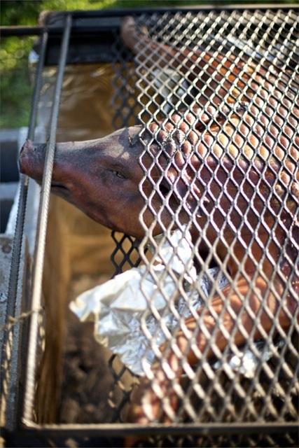 pig roast close